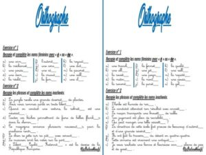 Les fiches d'exercices (CM/Orthographe)