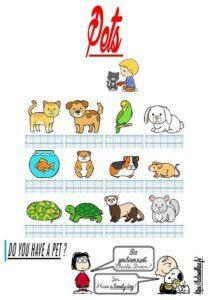 Les flashcards (Les animaux domestiques)